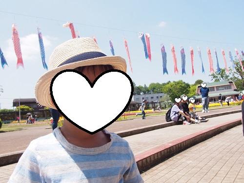 f:id:cherrypie-saitama:20190320103754j:plain
