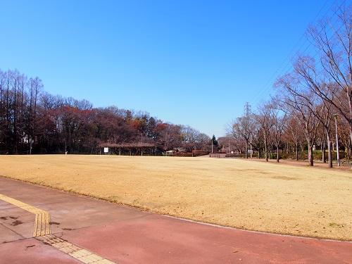 f:id:cherrypie-saitama:20190327110217j:plain