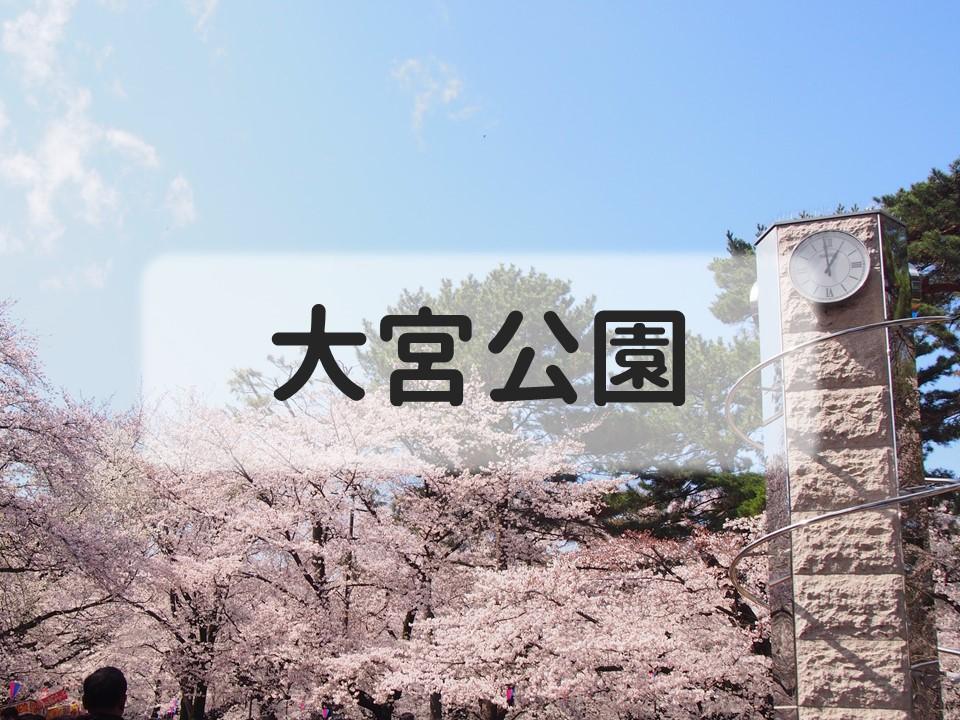 f:id:cherrypie-saitama:20190331153640j:plain