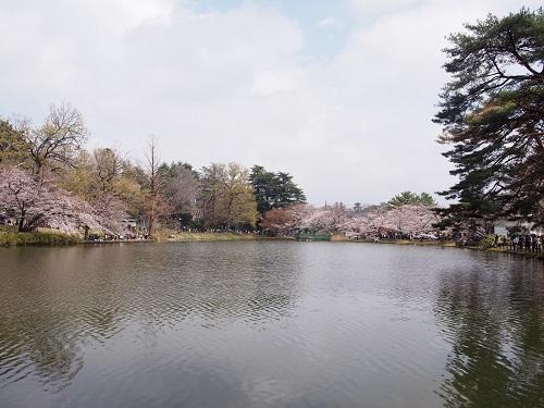 f:id:cherrypie-saitama:20190331225834j:plain