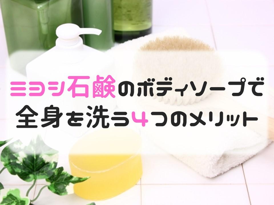 f:id:cherrypie-saitama:20190406210542j:plain
