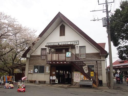 f:id:cherrypie-saitama:20190416070805j:plain