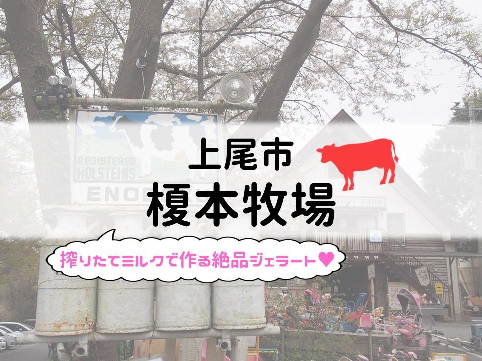 f:id:cherrypie-saitama:20190513100928j:plain