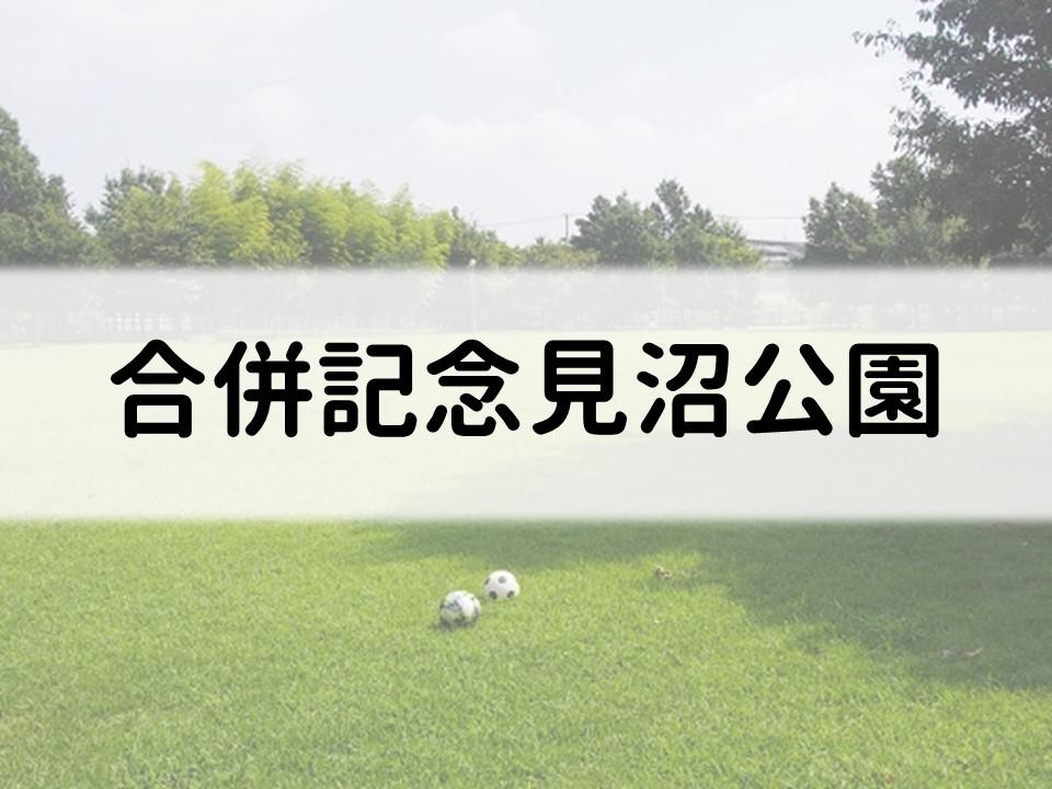 f:id:cherrypie-saitama:20190830124024j:plain