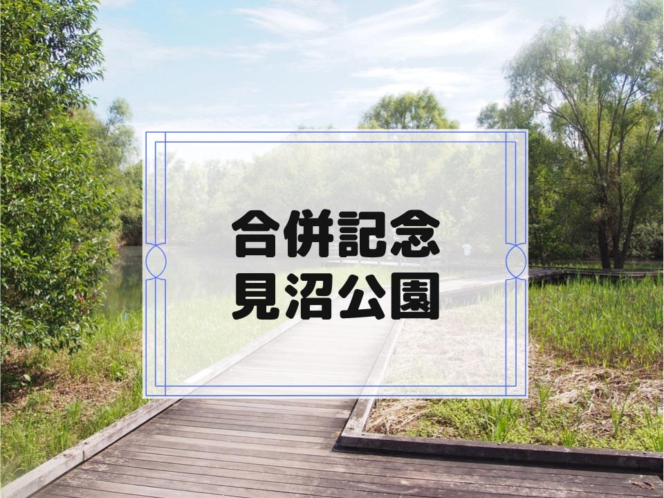 f:id:cherrypie-saitama:20191011212604j:plain