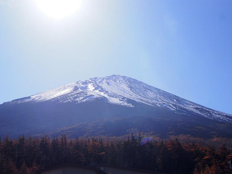 f:id:cherrypie-saitama:20191219225829j:plain