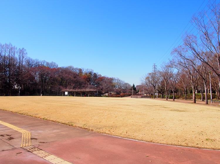 f:id:cherrypie-saitama:20210130233723j:plain
