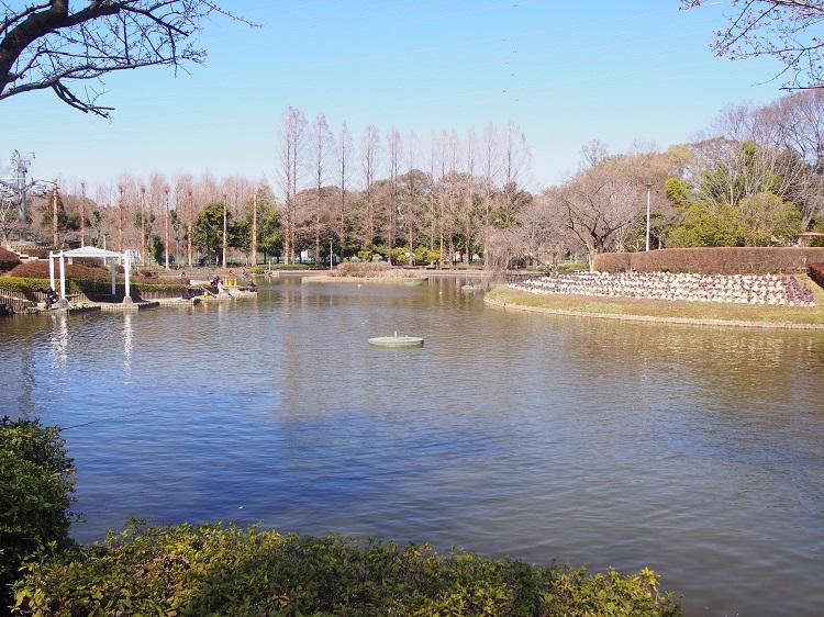 f:id:cherrypie-saitama:20210130233801j:plain
