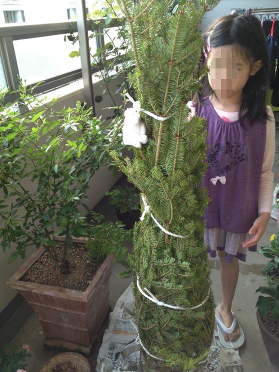 f:id:chi-chi57:20121126202936j:plain
