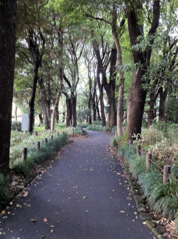 【北の丸公園】1
