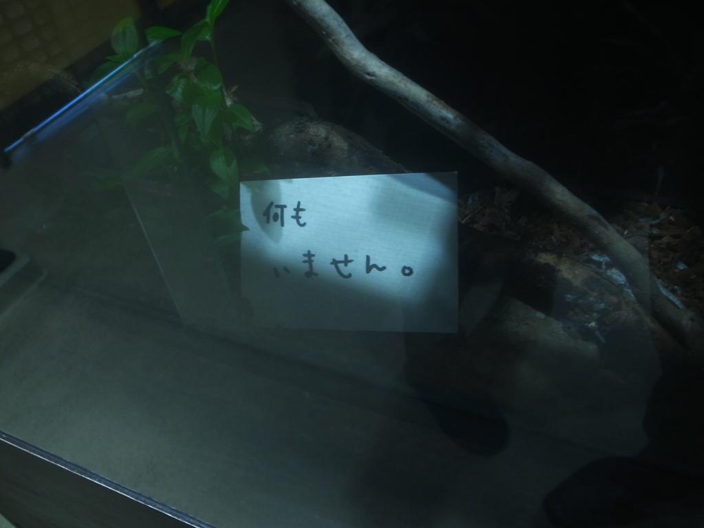 f:id:chi-ron-nu-p:20170304113243j:plain