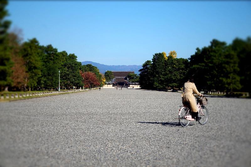 f:id:chi35hirotake:20171116203039j:plain