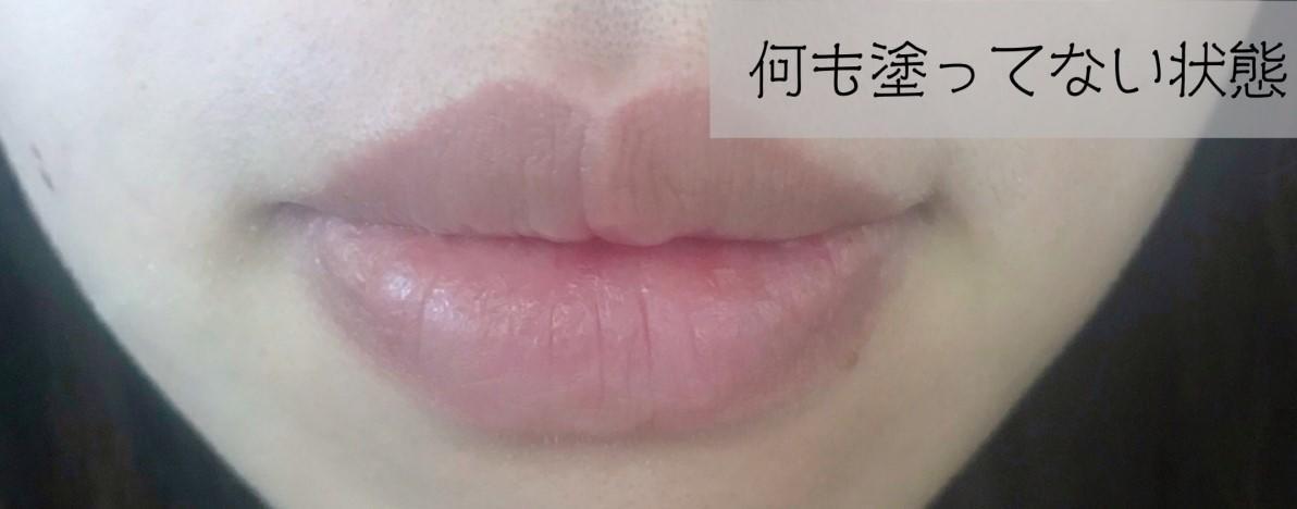 f:id:chi_monluv:20210226190249j:plain