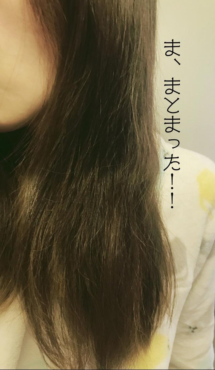 f:id:chi_monluv:20210303151217j:plain