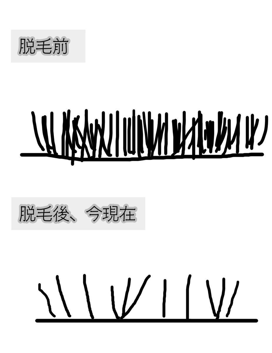 f:id:chi_monluv:20210310172930j:plain