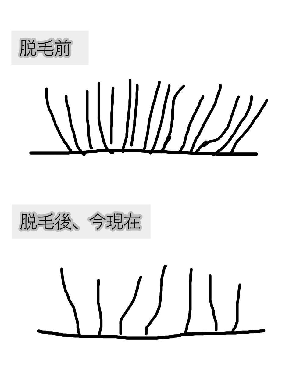 f:id:chi_monluv:20210310173820j:plain