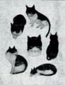 楳(うめ)六変化 キャネット猫イラストコンテスト審査員賞受賞