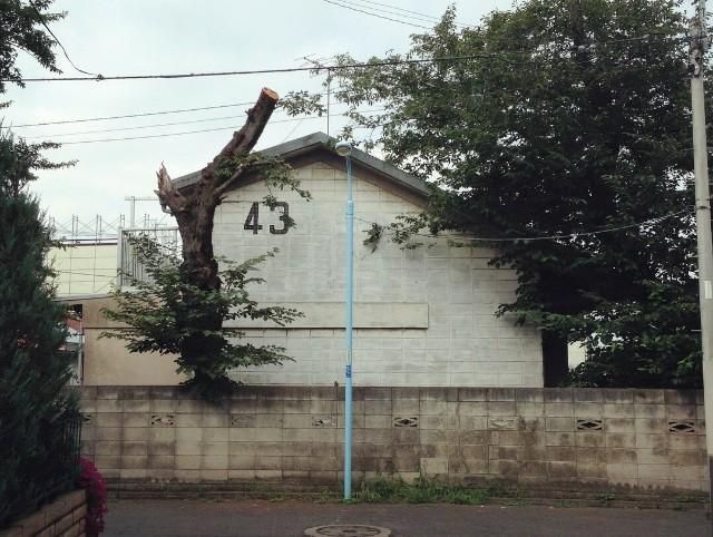 f:id:chiakiyukio:20190421202313j:image