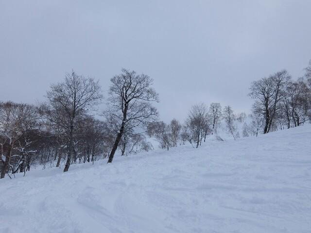 f:id:chiba-snow:20180304200533j:image