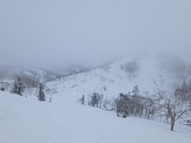 f:id:chiba-snow:20180304201139j:image