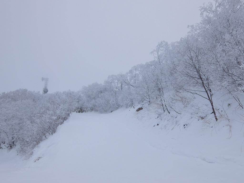 f:id:chiba-snow:20190104231440j:plain