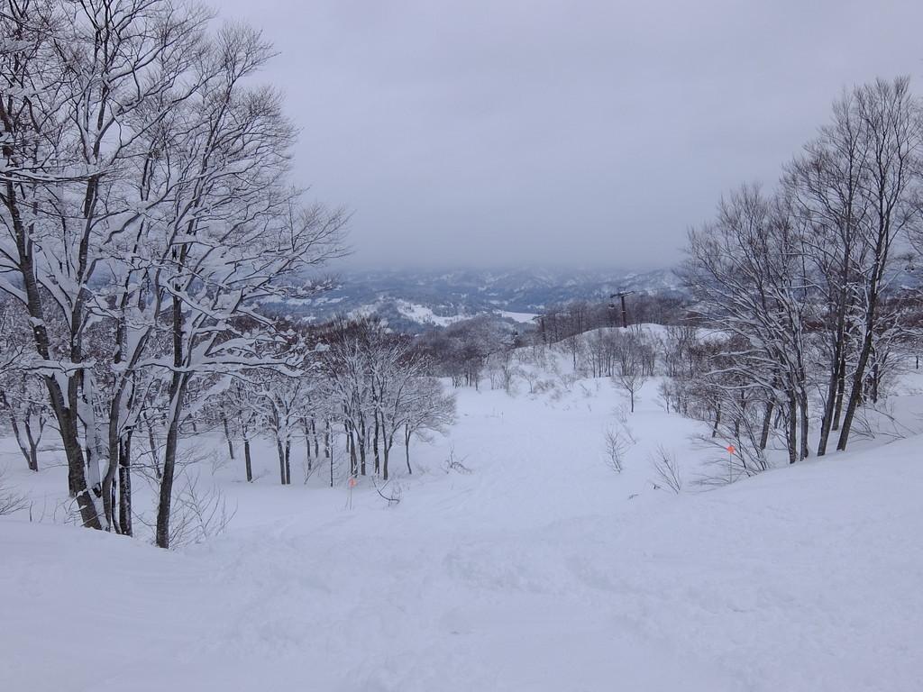 f:id:chiba-snow:20190110233651j:plain