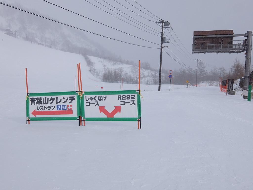 f:id:chiba-snow:20190129200703j:plain