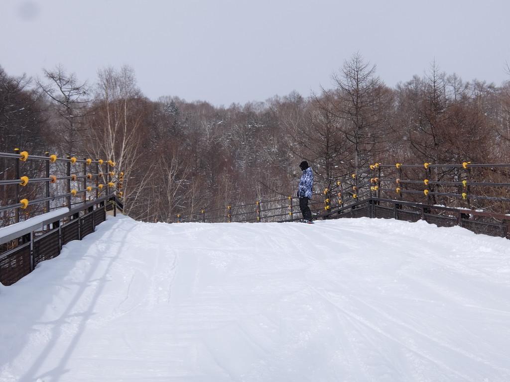f:id:chiba-snow:20190129202214j:plain