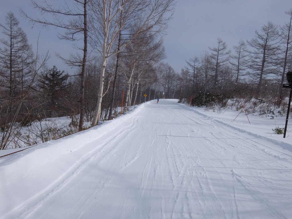 f:id:chiba-snow:20190129202342j:plain