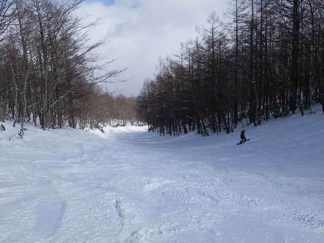 f:id:chiba-snow:20190212223200j:image