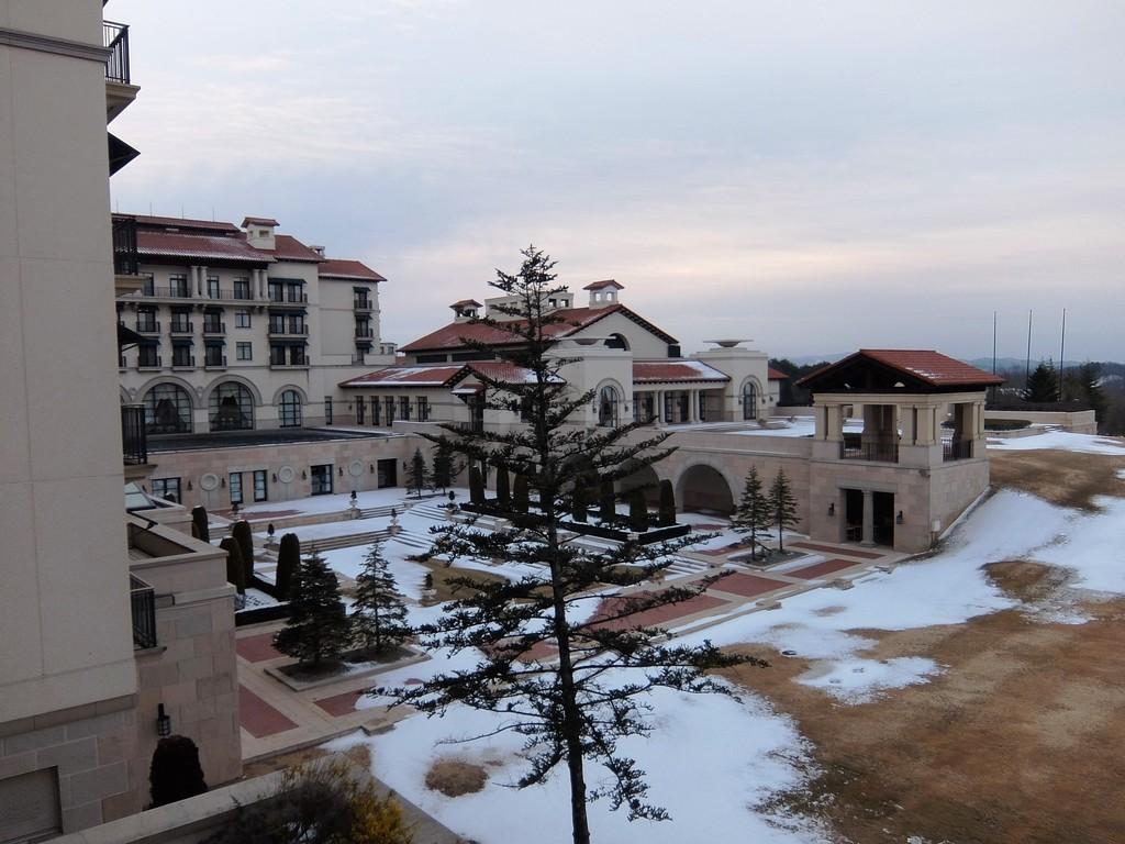 f:id:chiba-snow:20190213224831j:plain
