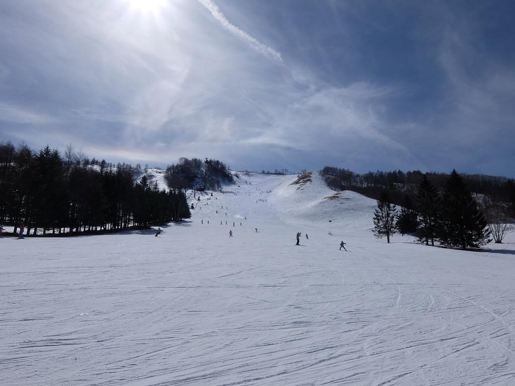f:id:chiba-snow:20190226230856j:plain