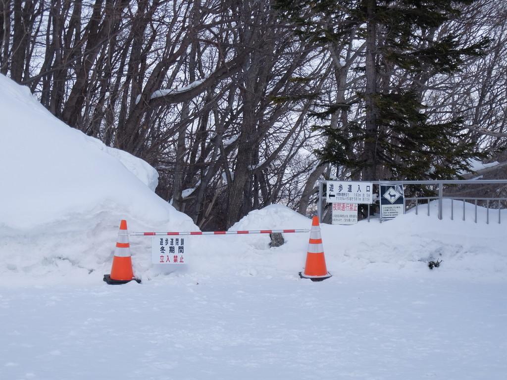 f:id:chiba-snow:20190304231837j:plain