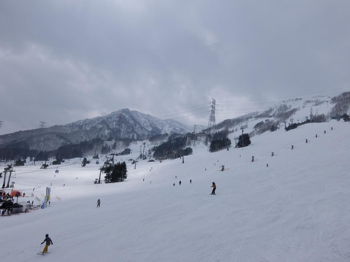 f:id:chiba-snow:20190328213113j:plain