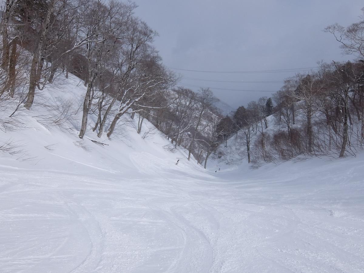 f:id:chiba-snow:20190328213347j:plain