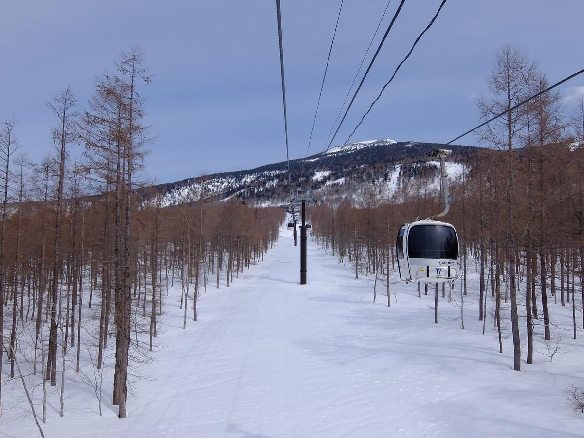 f:id:chiba-snow:20190415231828j:plain