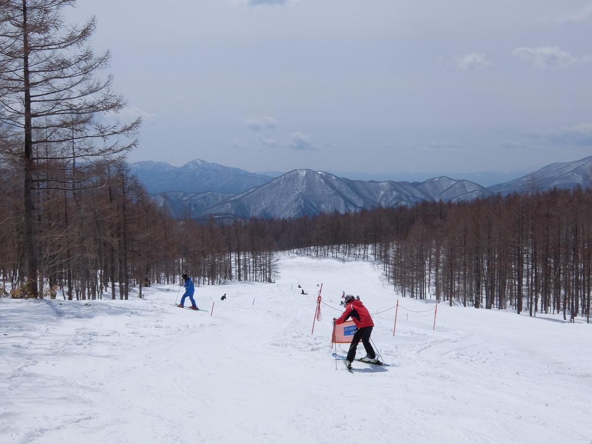 f:id:chiba-snow:20190415232543j:plain