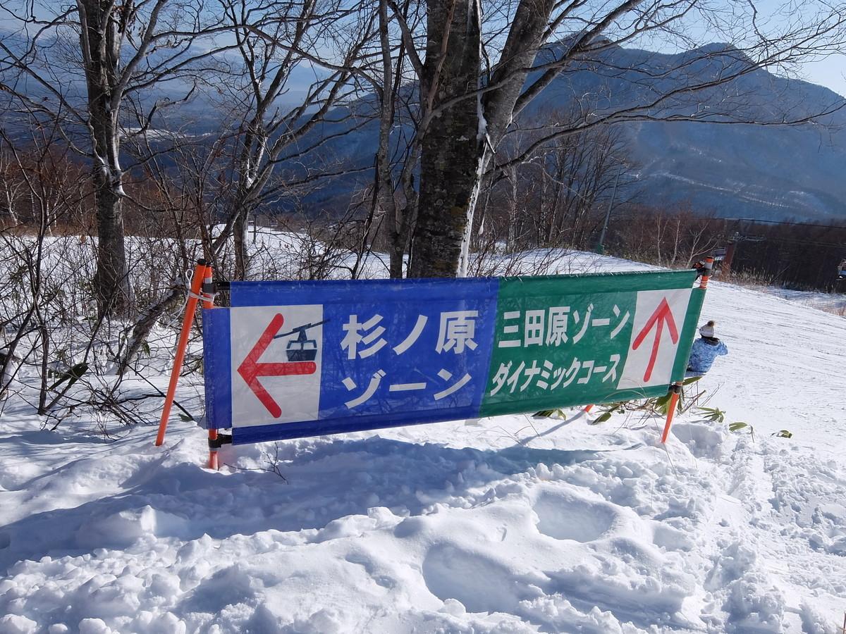 f:id:chiba-snow:20200118204005j:plain