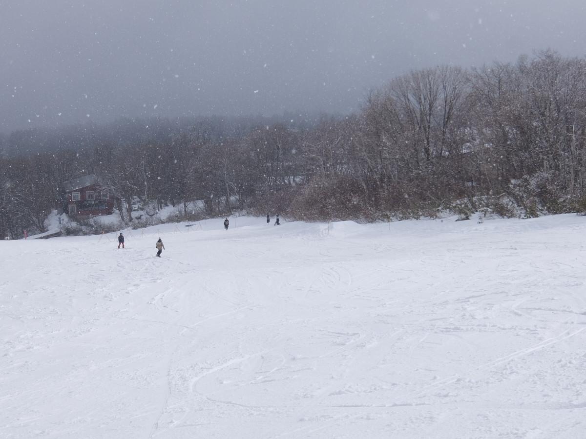 f:id:chiba-snow:20200124222609j:plain