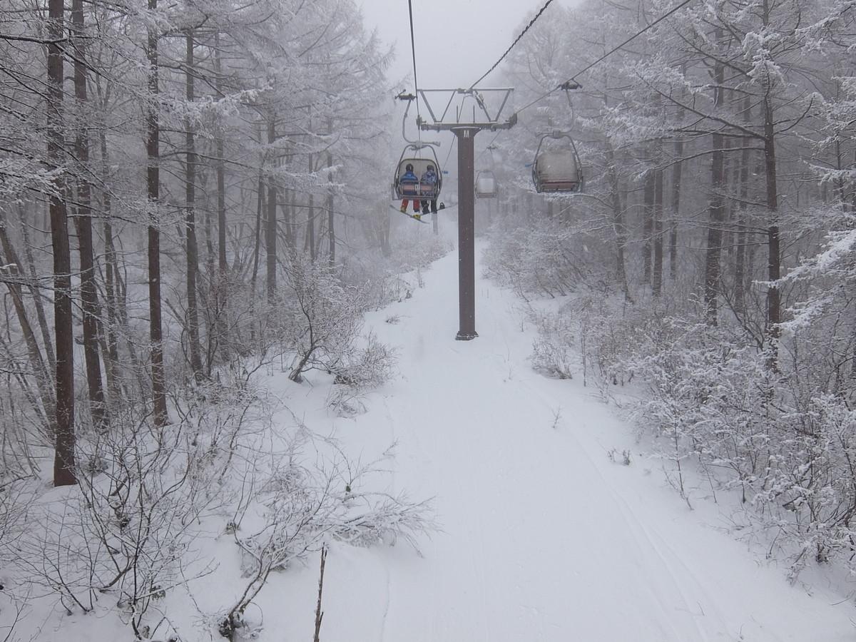 f:id:chiba-snow:20200127221427j:plain