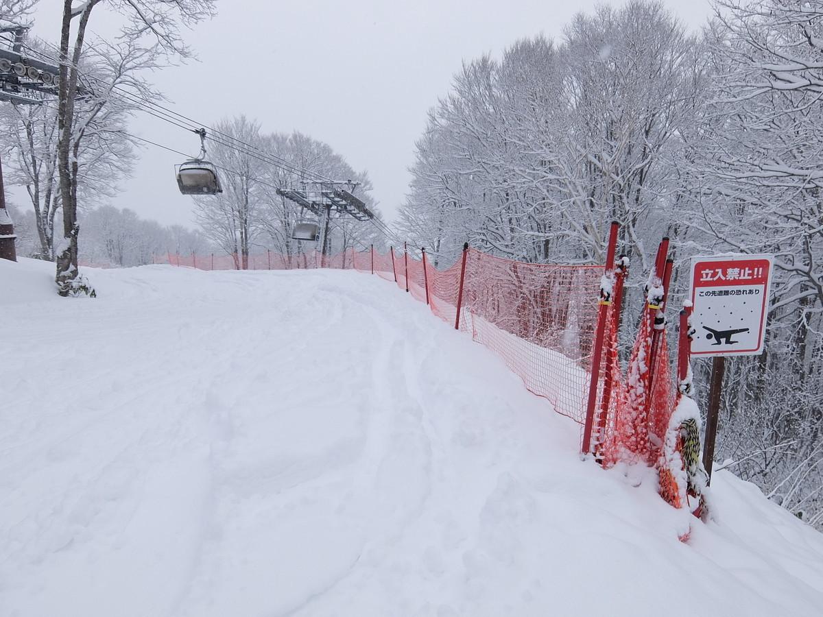 f:id:chiba-snow:20200127222442j:plain