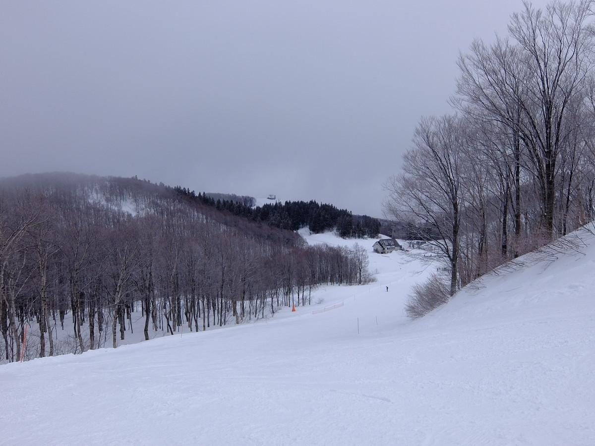 f:id:chiba-snow:20200301091933j:plain