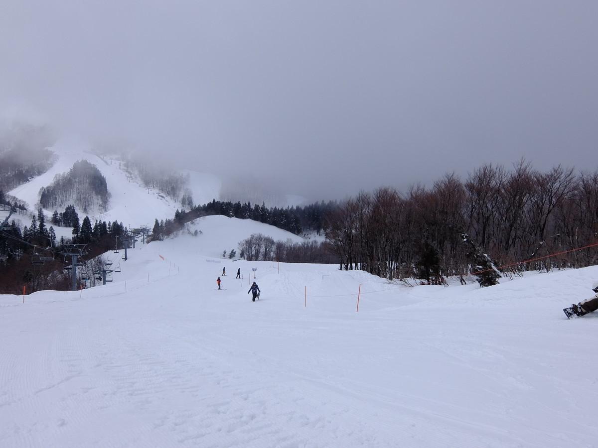 f:id:chiba-snow:20200301094346j:plain