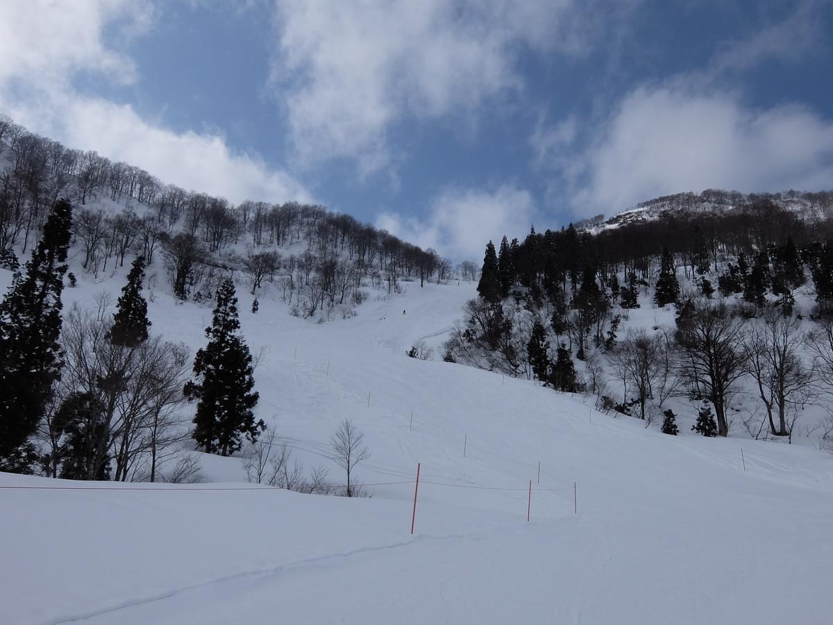 f:id:chiba-snow:20200301122856j:plain