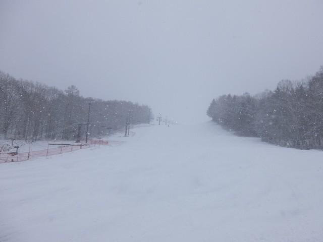 f:id:chiba-snow:20200317125352j:image