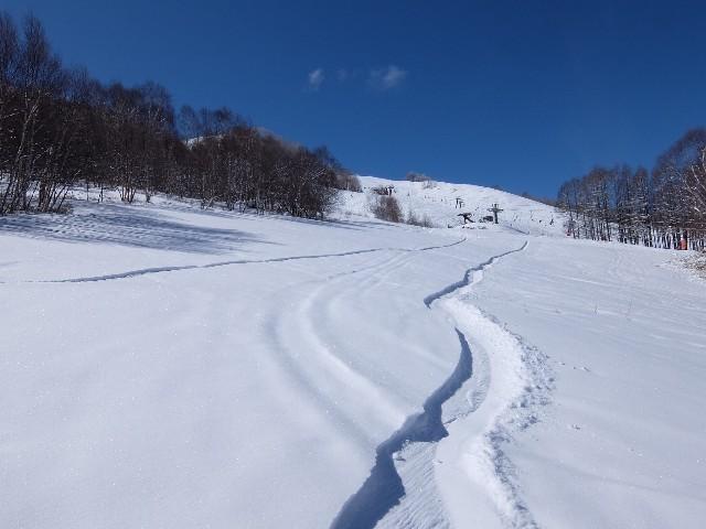 f:id:chiba-snow:20200317125455j:image