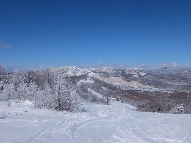 f:id:chiba-snow:20200317125511j:image