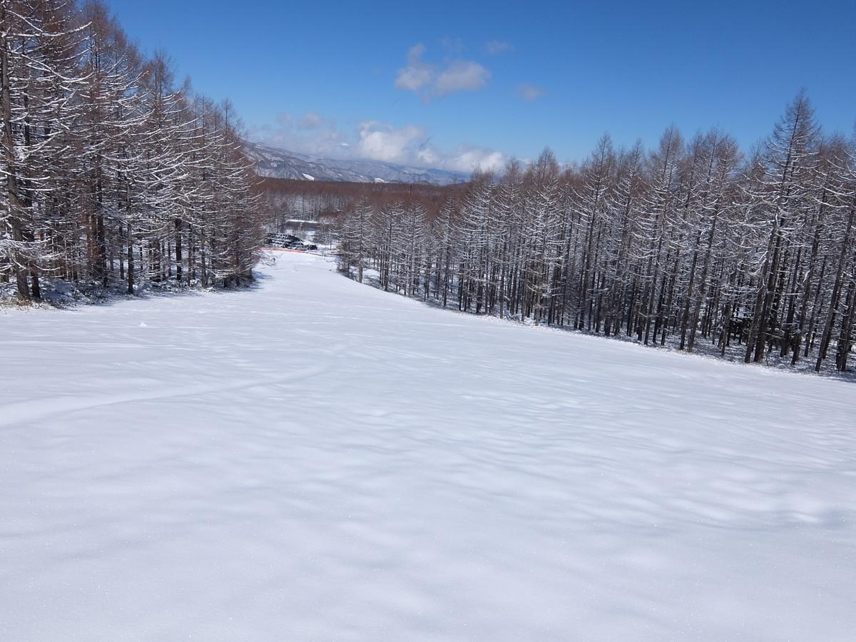f:id:chiba-snow:20200328232638j:plain