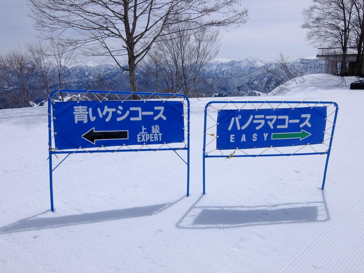 f:id:chiba-snow:20200418124252j:plain