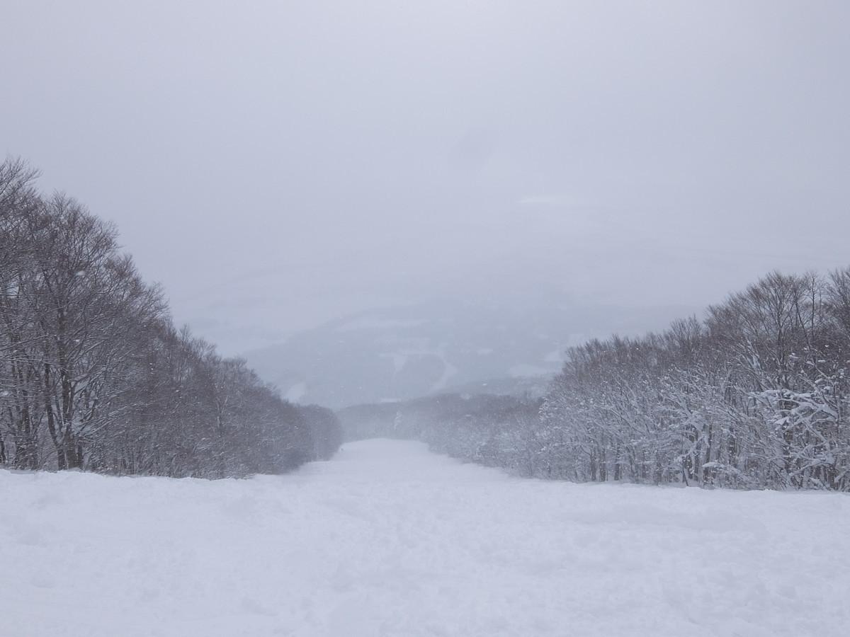 f:id:chiba-snow:20210113234920j:plain